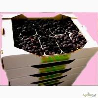 Гофролоток для малины и ежевики в пинетках