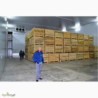 Овощехранилища с холодильными установками. Монтаж, гарантия, обслуживание.Крым