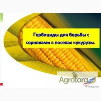 Гербициды на кукурузу - Прима, Титус, Базис, Хармони, Милагро, Диален Супер, Дуал Голд