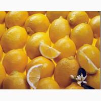Купим лимоны, цитрусовые в ассортименте