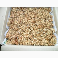 Продам орех грецкий