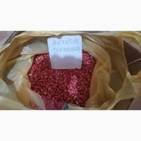 Продам семена Делитоп (кукуруза)