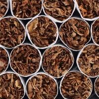 Куплю табак фабричный