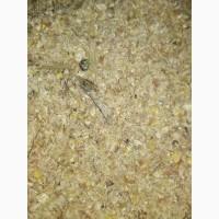 Продам отходы кукурузы 3.30 за кг, в мешках