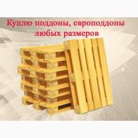 Куплю поддоны европоддоны деревянные пластиковые б/у по самым актуальным рыночным ценам