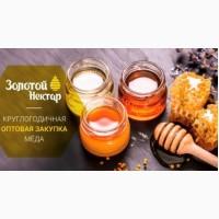 Закуповуємо мед, оптом, 40 грн