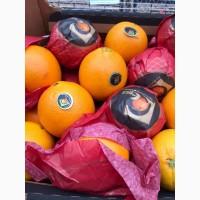 Продаем свежий апельсин Навел