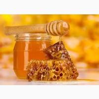 2021 мед, закуповуємо оптом