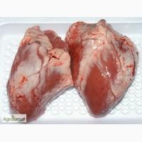 Продам говяжьи субпродукты по всей Украине недорого