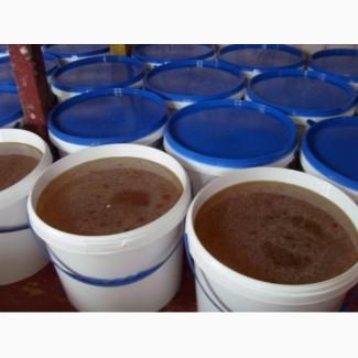 Продам оптом украинский мёд. Подсолнечник, липа, акация