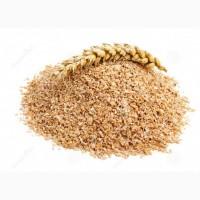 Продаем отруби пшеничные пушистые и гранулированые/ висівки пшеничні