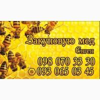 Купую мед дорого в Вінницькій області