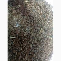 Продам льон коричневий