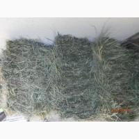 Продам сено луговое первого покоса май 2019г г.Днепр