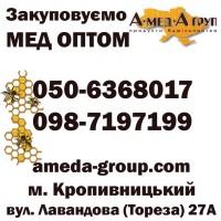 Закупка меда оптом АМЕДА ГРУП. От 300 кг опт