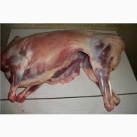 Продаём мясо баоанины