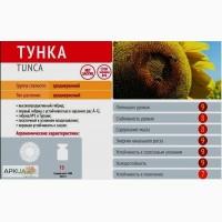 Оригинальные семена подсолнечника Тунка, ЛГ5580 2017г