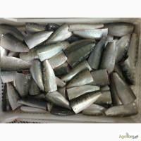 Продам:Морская рыба с/м из Марокко и Мавритании
