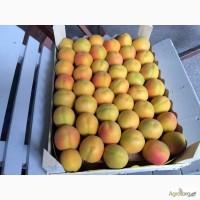 Продаем персик абрикос