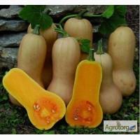 Продам семена Тыква Арахисовое масло