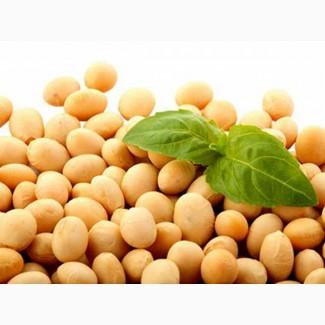 Купим сою ГМО по всей Украине