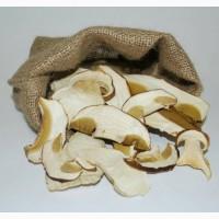 Продамо елітний Білий сушений гриб