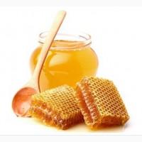 Купим мёд