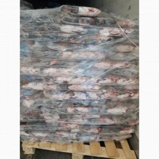 Головы лосося, замороженные блоки (блок 19 кг). Размер 2-3