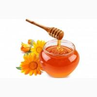 Покупаем мед у пасечников по Николаевской обл