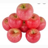 Покупаем яблоко товарное, опт