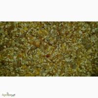 Продам отходы кукурузы 5000Т