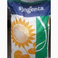 Семена подсолнечника Сингента НК Конди (Syngenta NK Kondi)