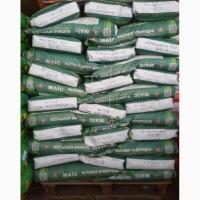 Продам насіння кукурудзи Джекпот
