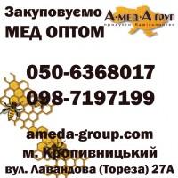 Закуповуємо мед оптом АМЕДА ГРУП Кіровоградська, Миколаївська обл