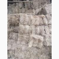 Продам луговое сено в тюках 2021 года