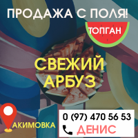 Продажа с ПОЛЯ арбуз топган акимовка