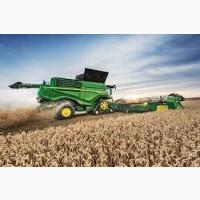 Кукуруза новый урожай 2020 года. Закупаем оптом