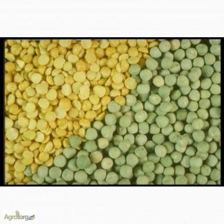 Закупаем горох жёлтый, зелёный