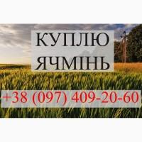 Куплю ячмінь, дорого, центрально-західна україна