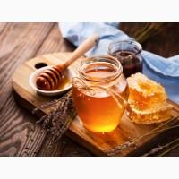 Куплю мёд с подсолнуха, акации и разнотравья. Оптом