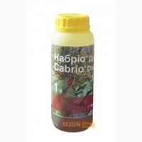 КАБРИО ДУО, 1 литр BASF(Мучнистая роса, пероноспороз, альтернариоз, фитофтороз)