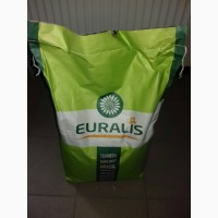 Семена подсолнечника Евралис Флоримис