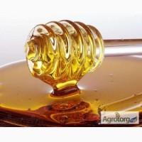 Покупаем мёд, на территории всей Украины, по высоким ценам