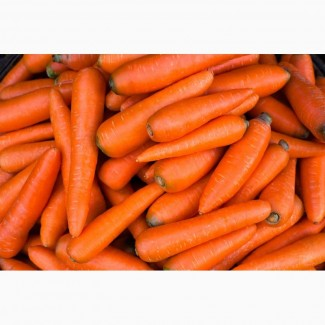 Продам Морковь мытая отборная фасованная одного размера, пакет, сетка