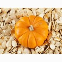 Західна Україна: закупка гарбузового насіння