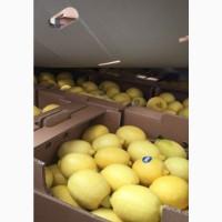Продам лимон Турция Испания